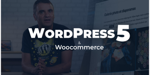 Wordpress 5 - Les fondamentaux